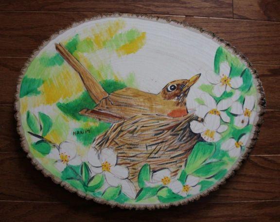 Wood - American Robin