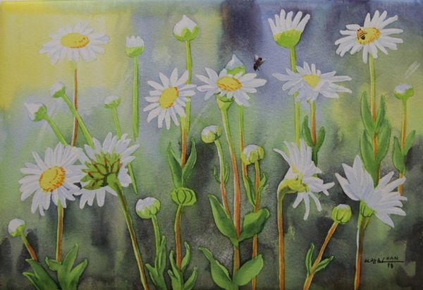 Daisy Garden II