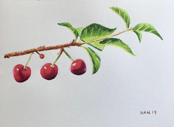 Cherry Tree IV