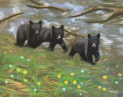 Three Bear Cubs