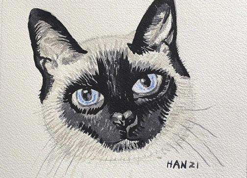 Portrait - Cat - Mingo - Not for Sale
