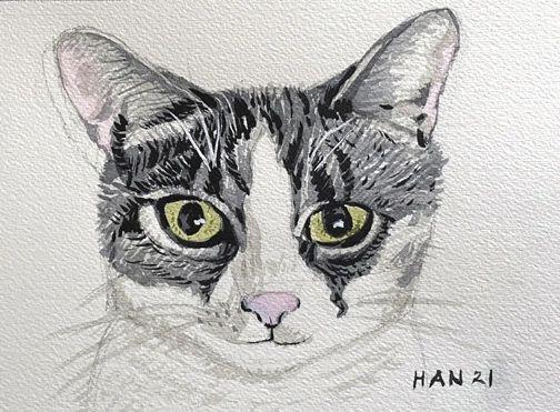 Portrait - Cat - Buster - Not for Sale