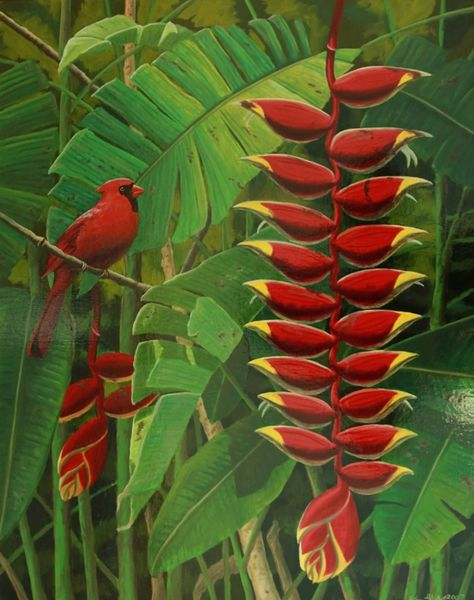 Heliconia with Cardinal - Not for Sale