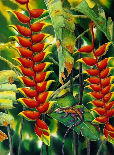Heliconia with Lizard - Not for Sale