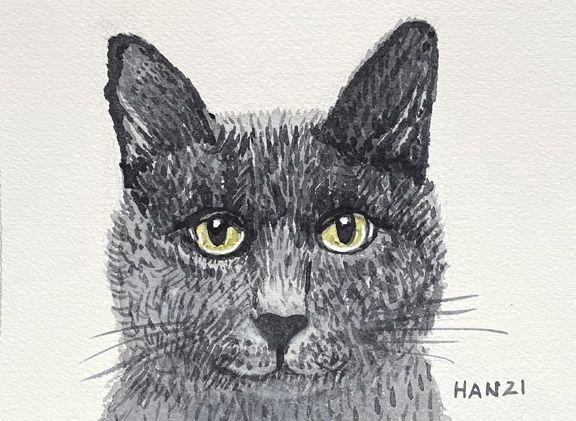 Portrait - Cat - Angel - Not for Sale