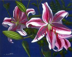 Pink Lilies II