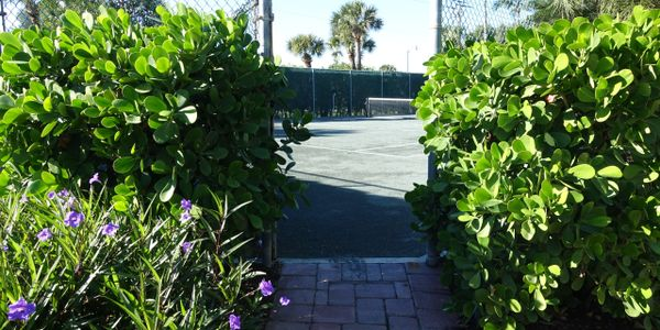 The Active Palm Beach Lifestyle, homes for sale with tennis courts and putting greens...