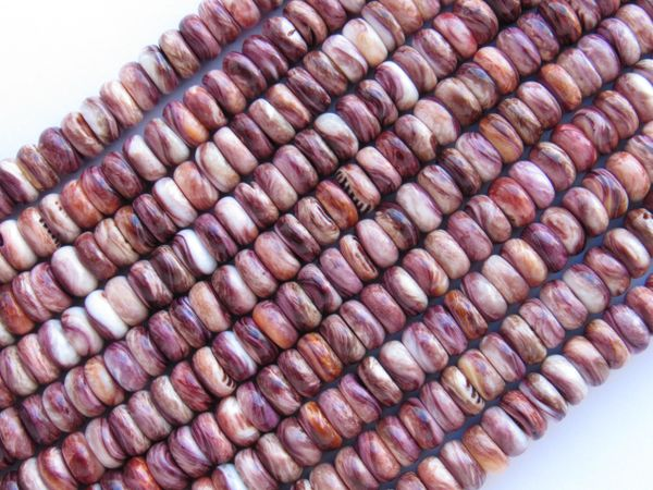 Jewelry making supply - Lion's Paw SHELL 6mm BEADS sea shell jewelry Rondelle beads
