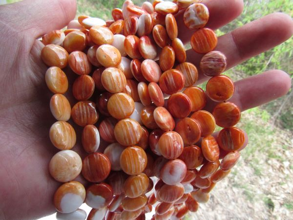 Orange Spiny Oyster SHELL BEADS 12mm Coin from Sea of Cortez bead supply for making jewelry
