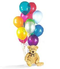 Teddy Bear and Balloons - plu04