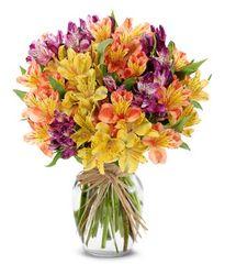 The Sunshine Bouquet - und16