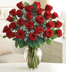 24 Premium Long Stem Red Roses- lov14