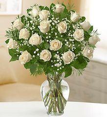 18 Premium Long Stem White Roses- lov127