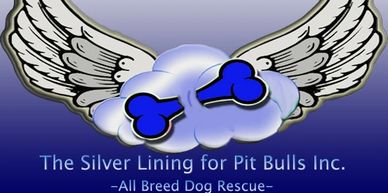 The Silver Lining for Pit Bulls will be selling pillows, jewelry, car magnets, household items, and