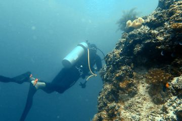 Dive Stay Thulusdhoo
