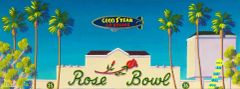 """Rose Bowl"" Canvas Print - 16 x 48"