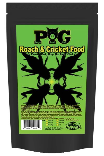 16 oz (PIG) Pangea Insect Grub 1 pound.