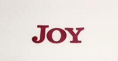 Joy Script - Large
