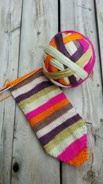 Cloud Candy Hand Dyed Sock Yarn Cereus Sock