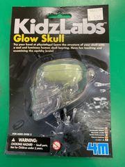 Glow Skull Kit