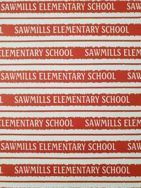Sawmills Elementary School Paper