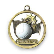 VOLLEYBALL - GAME BALL MEDALLION