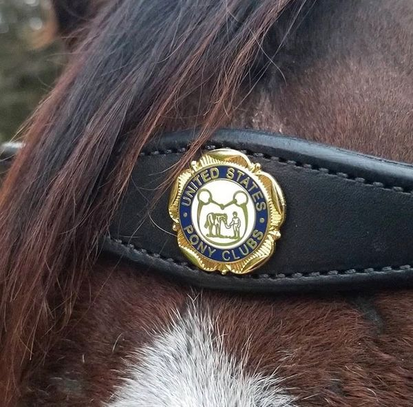 Handmade Browband is Ready to personalize!