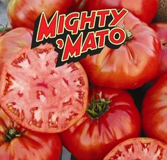 Grafted Mortgage LIfter Mighty Mato