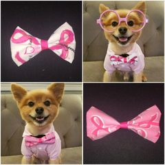 Breast Cancer Bow Tie for Pets