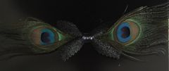 Peacock Feather Bow Tie