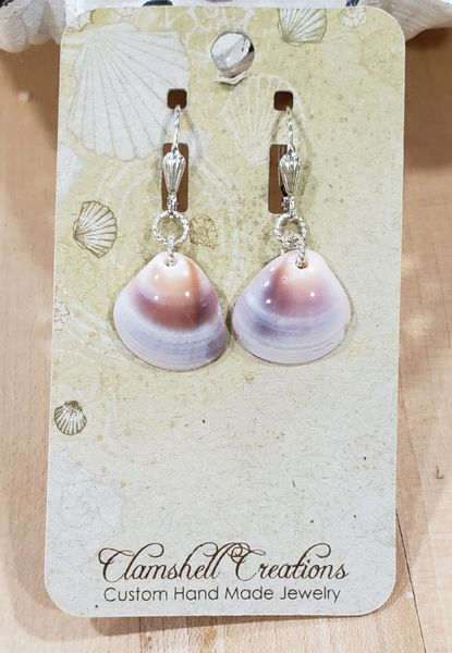 Polished Clamshell Earrings