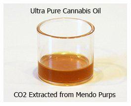 Ultra Pure Mendocino Purps Cannabis Oil