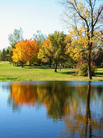 Lake Miltona Golf Club, Alexandria MN - Fall day