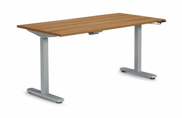 Global Offices to Go (OTG) Programmable Height Adjustable Sit-Stand Table