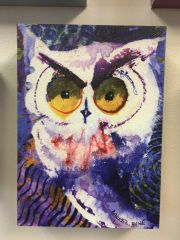 Laurel Bahe Owl Greeting Cards