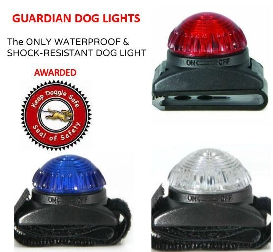 Adventure Lights Guardian Trident Dog Light Red Safety Collar Light Waterproof