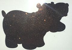 Shimmer Glitter! - Grizzly Bear