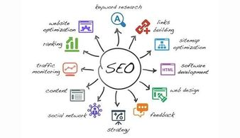 SEO Analyst in Lucknow