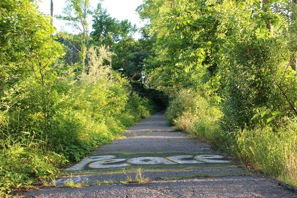 Natural Settings and Streetscapes