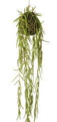 Faux Trailing Hoya Linearis Plant