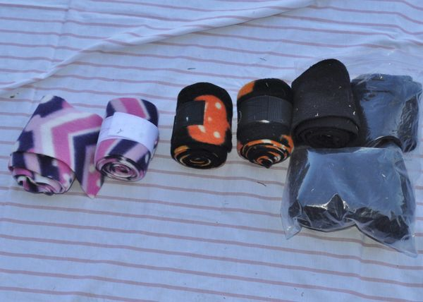 Pony polo lot