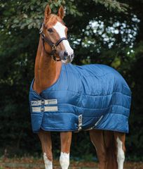 MIO Insulator stable blanket