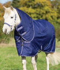 Amigo Hero 6 Plus Pony