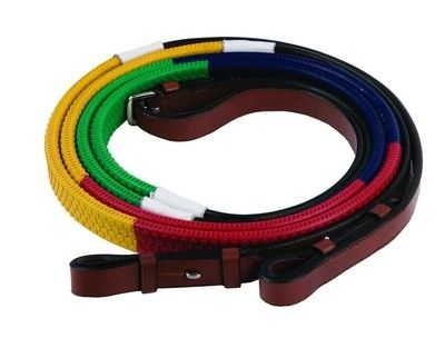 Henri de Rivel Training Rainbow Reins