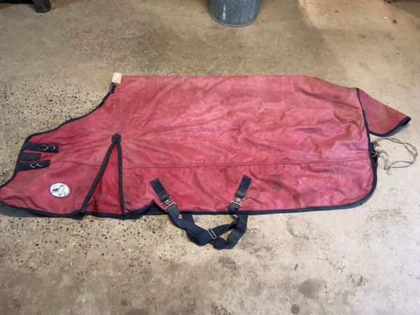 "Used Jeffers Equine 81"" blanket"