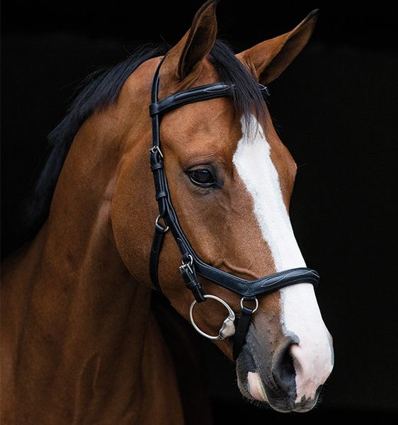 Rambo® Micklem® Deluxe Competition Bridle English Leather