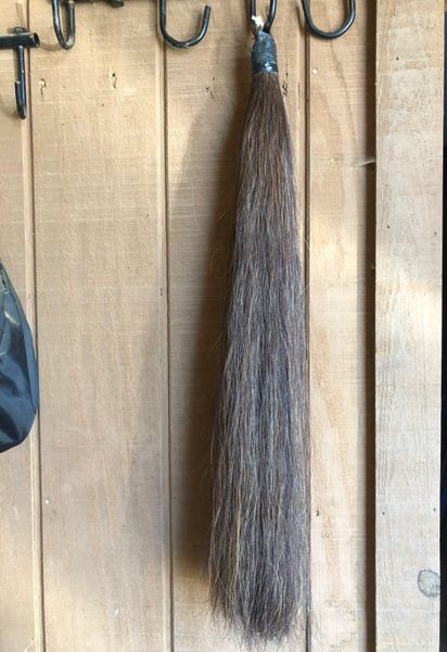 Sorrel tail extension