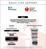 BLS for Healthcare Provider,