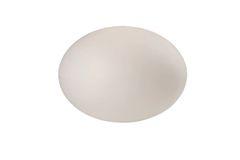 Ostrich Egg Medium Outdoor Lamp