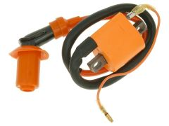 Naraku High Output Ignition Coil